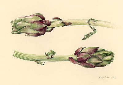 Veg Painting - Artichokes by Alison Cooper
