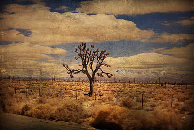 As We Go Down Life's Lonesome Highway Print by Laurie Search