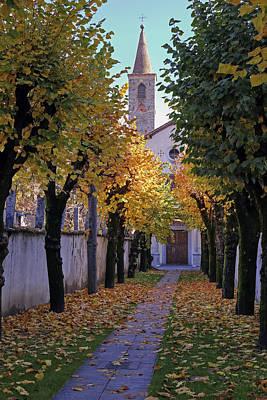 Plane Tree Photograph - Ascona - Collegio Papio by Joana Kruse