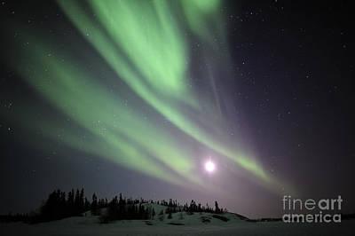 Yellowknife Photograph - Aurora Borealis, Yellowknife, Northwest by Jiri Hermann