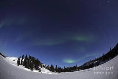 Aurora Over Vee Lake, Yellowknife Print by Yuichi Takasaka