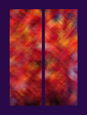 Autumn Ash Tree Diptych Print by Steve Ohlsen