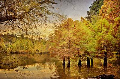 Autumn At The Creek Print by Cheryl Davis