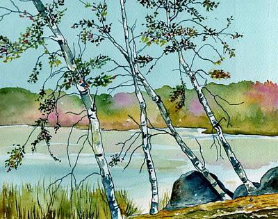 Autumn Birches Print by Brenda Owen