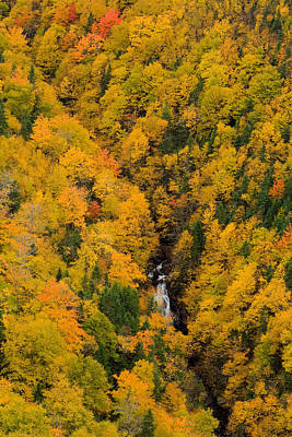 Autumn Colour And Waterfalls, Cape Print by John Sylvester