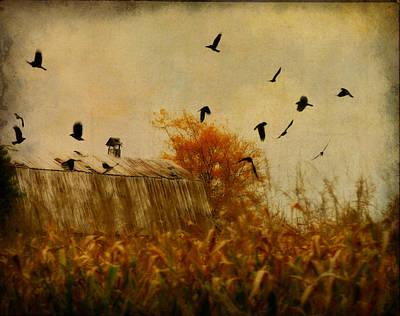 Cornfield Digital Art - Autumn Cornfield by Gothicolors Donna Snyder
