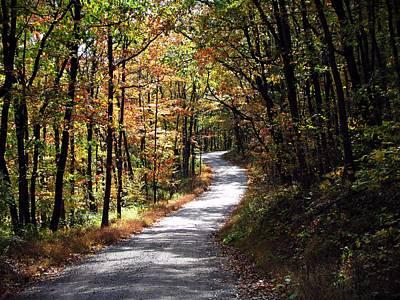 Autumn Country Lane Print by David Dehner