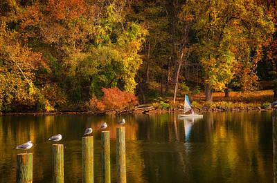 Autumn Day Print by Boyd Alexander
