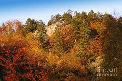Autumn Scene Photograph - Autumn Forever by Lutz Baar
