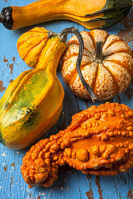 Autumn Gourds Still Life Print by Garry Gay