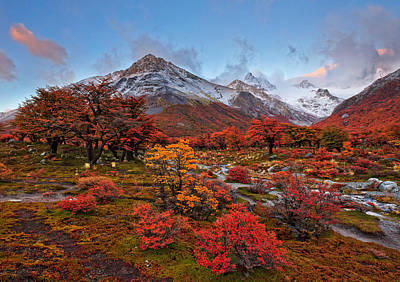 Autumn In Argentina Print by Helminadia