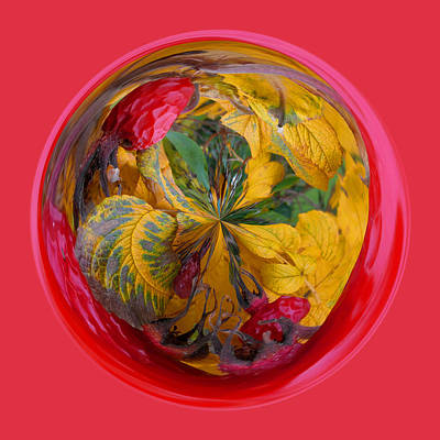Autumn In The Sphere Print by Robert Gipson