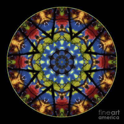 Autumn Leaves Reflection Mandala Print by Janeen Wassink Searles