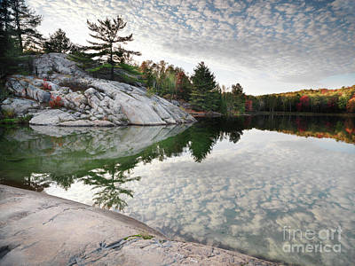 Autumn Nature Lake Rocks And Trees Print by Oleksiy Maksymenko