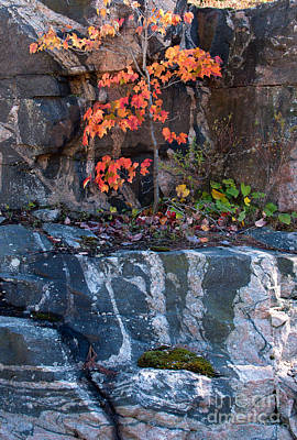 Rock Photograph - Autumn Scene by Les Palenik