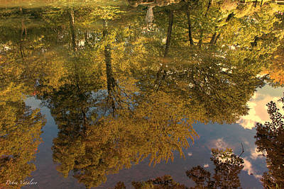 Autumn Leaf On Water Mixed Media - Autumn Sky Reflection by Debra     Vatalaro