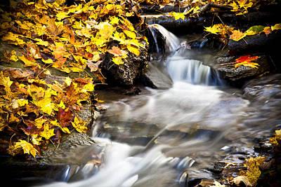 No 3 Photograph - Autumn Stream No 3 by Kamil Swiatek