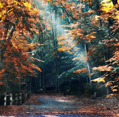 Wissahickon Creek Photograph - Autumn Sun Beam by Bill Cannon