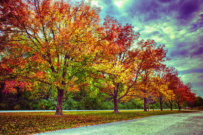 Autumn Tree Line At Busch Print by Bill Tiepelman