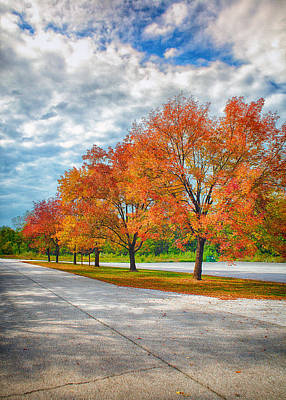 Autumn Trees At Busch Print by Bill Tiepelman