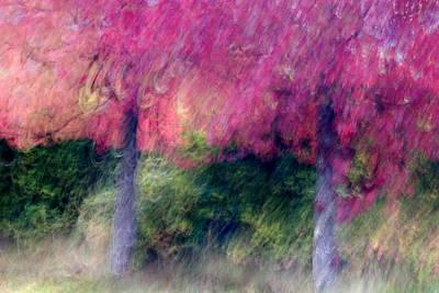 Autumn Trees Print by Carol Leigh