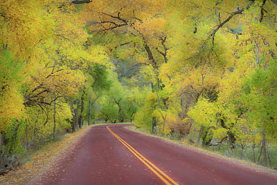 Autumn Trees On Road Print by Royce Bair