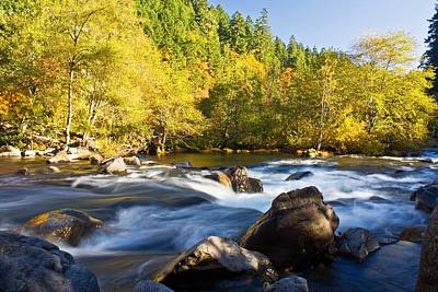 Obryant Photograph - Autumn Umpqua by Tyra  OBryant
