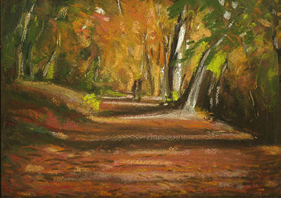 Autumn Woods 4 Print by Paul Mitchell