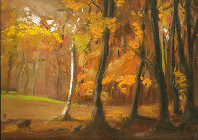 Autumn Woods 5 Print by Paul Mitchell