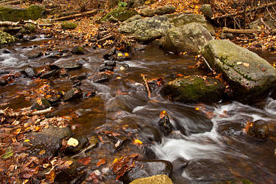 Autumns Creek Print by Karol Livote