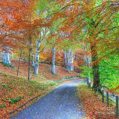 Autumns Way Vert Print by John Kelly