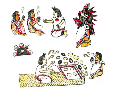 Aztec Medicine, Codex Magliabechiano Print by Science Source