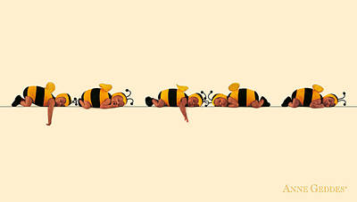 Bee Photograph - Baby Bees by Anne Geddes