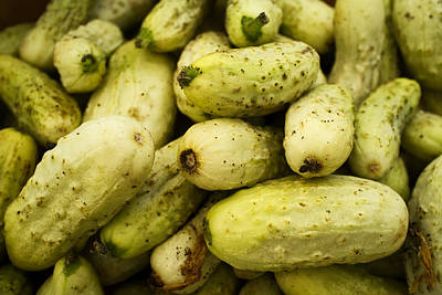 Cooking Photograph - Baby Cucumbers by Tanya Harrison