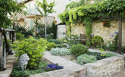 Stone Planter Photograph - Backyard Garden by Andersen Ross