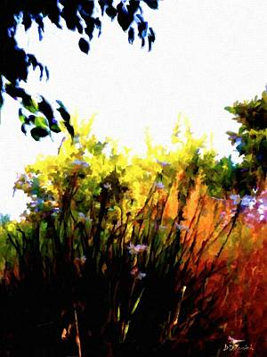 Backyard Hues Print by Brian D Meredith