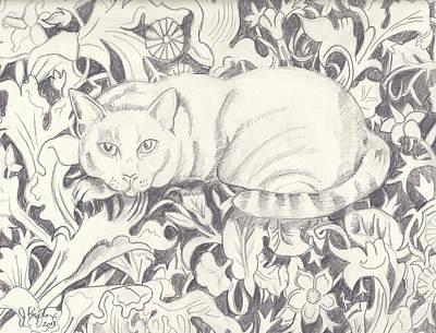 Bailey The Cat Print by John Keaton