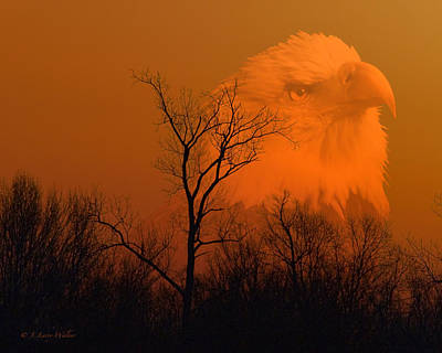 Bald Eagle Spirit Of Reelfoot Lake Print by J Larry Walker