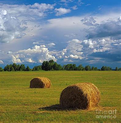 Bales Of Hay Print by Elena Filatova