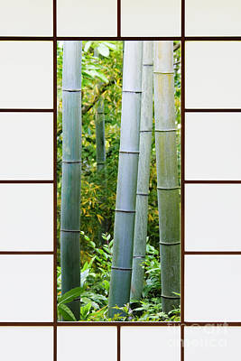Bamboo Forest Through A Rice Paper Window Print by Jeremy Woodhouse