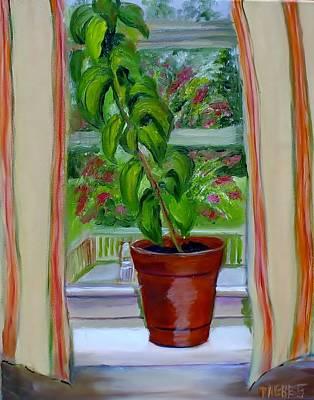 Basil In My Window Print by Phebe Smith