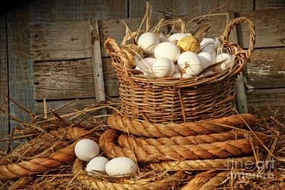 Basket Of Eggs On Straw Print by Sandra Cunningham