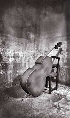 Double Bass Photograph - Bass Leaning On Chair by Grant Faint