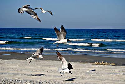 Wet Fly Digital Art - Beach Birds In Play by Nicole Hutchison