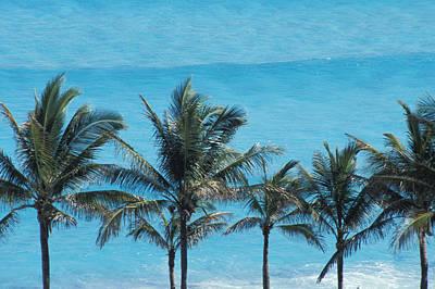 Beach In Cancun Print by Axiom Photographic
