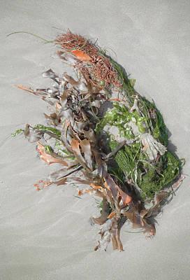 Beach Salad Print by Alexander Kunz