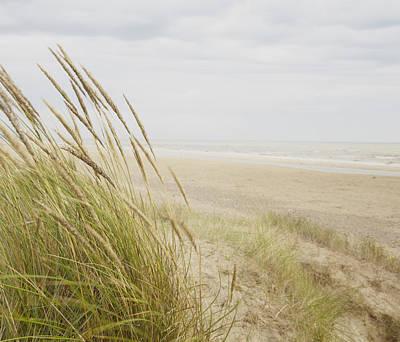 Y120831 Photograph - Beachscape 8 by Ben Richardson