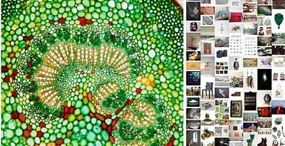 Beads Of Green Print by Holley Jacobs
