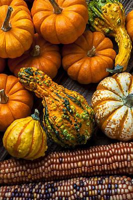 Abundance Photograph - Beautiful Autumn by Garry Gay