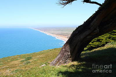 Beautiful Coastline Of Point Reyes California . 7d16033 Print by Wingsdomain Art and Photography